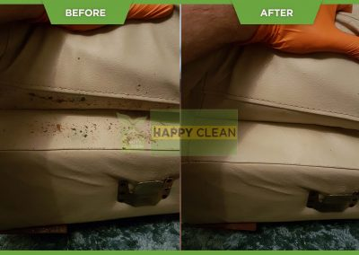 leather cleaning dublin (16)