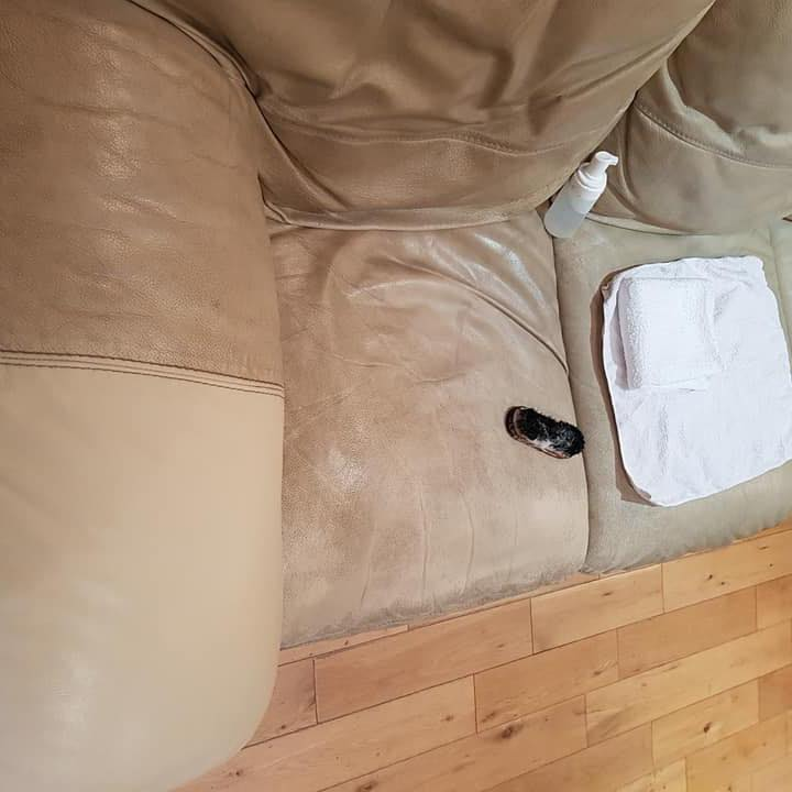 Cleaning a cream leather sofa